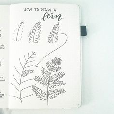 Drawing Doodles Ideas This week's tutorial is how to draw a fern. It struck me that the repeating segments would make this perfect for a Leaf Drawing, Floral Drawing, Plant Drawing, Doodle Drawings, Easy Drawings, Doodle Art, Zen Doodle, Botanical Line Drawing, Botanical Drawings