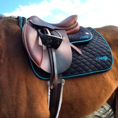 Ogilvy Memory Foam Jumper Half Pad & Ogilvy Baby Pad.  Ogilvy Equestrian Approved!  Equine, Half Pad, Saddle Pad, Helmet, Saddle, Fashion, Style, Comfort, Equipment, Tack, Horse, Pony, Gray, Chestnut, Bay, Black, Horse Show, Show Jumping, Equitation, Pony