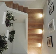 Stairs, Mirror, Furniture, Home Decor, Stairway, Decoration Home, Staircases, Room Decor, Mirrors