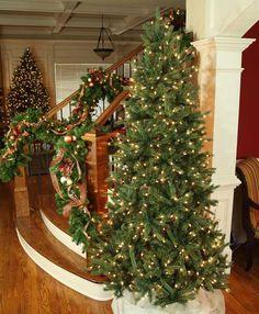 6.5 FT Tall Balsam Fir Christmas Tree Pre Lit Warm White LED 550 Count Mini  Lights