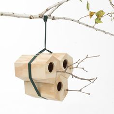What a fabulous, yet simple, concept for attracting birds...... the blue wrens in my garden would love it!