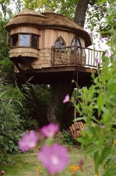 1000+ images about tree homes on Pinterest