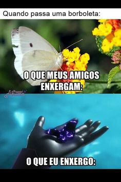 Translation: When a butterfly passes. What my friends see What I see Ladybug Y Cat Noir, Miraclous Ladybug, Sao Memes, Funny Memes, Lost Stars, Adrien Y Marinette, Miraculous Ladybug Fan Art, Comedy Memes, Starco