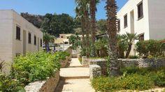 L'azzurro del cielo, il bianco dell'intonaco che riflette al sole, il verde delle siepi e delle palme. Al Villaggio Calamancina si possonio gustare tutti i colori della Sicilia.