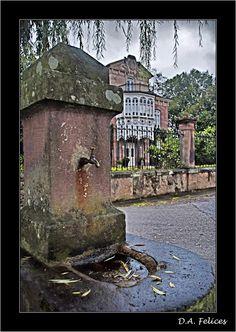 """Fotografías """"Felices"""" de Cantabria: Casa """"Las Magnolias"""" (Mazcuerras). Indiana, Magnolias, Painting, Art, Luxury, Happy Photography, Vertical Gardens, Mansions, Earth"""