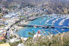 Catalina, California. Need to go there soon.