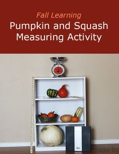 F is for Fall Pumpkin and Squash Measuring | eager Ed