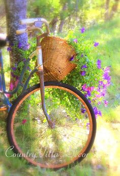A Bicycle Built For Flowers. Bicycle Decor, Retro Bicycle, Bicycle Art, Bike Planter, Push Bikes, Flower Basket, Garden Art, Beautiful Gardens, Flower Power