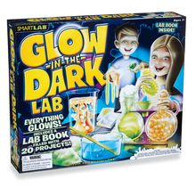From a glowing lava lamp to glowing slime, everything in this wacky science kit is radiant. A full-color instruction manual features 20 different illuminating science experiments, with step-by-step instructions for how to make each glowing concoction, including stickers, snow and geysers.
