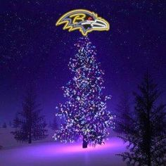 .Go Baltimore Ravens
