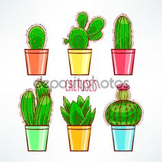 Фотообои Милые маленькие кактусы
