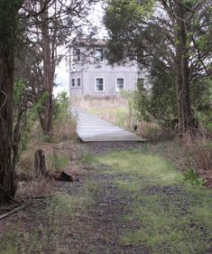 A small, off-grid home on the Patuxent River in Southern, Maryland. Off The Grid, River, Maryland, Plants, Southern, House, Home, Plant, Homes