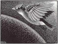 """""""The 1st Day of the Creation"""" by M. C. Escher, 1925"""