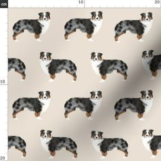 Australian Shepherd Fabric - Aussie Dog Australian Shepherds Fabric By Petfriendly - Aussie Dog Cotton Fabric by the Metre with Spoonflower Australian Shepherds, Blue Merle, Cotton Twill Fabric, Cotton Canvas, Aussie Dogs, Reusable Bags, Working Dogs, Border Collie, Beautiful Babies