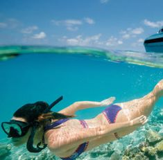Sunset Safaris offers Fraser Island Tours and Great Barrier Reef from 1 to 6 days packages departing Brisbane, Gold Coast & Noosa Call us 1300 553 Great Barrier Reef Tours, Fraser Island, Island Tour, Gold Coast, Brisbane, Safari, Sunset, Day, Sunsets