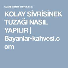 KOLAY SİVRİSİNEK TUZAĞI NASIL YAPILIR | Bayanlar-kahvesi.com