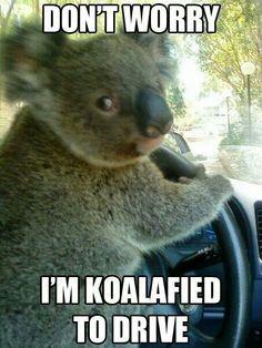 Marsupial got your tongue? :P