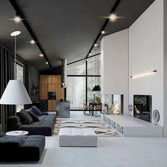 black & white wall/white floor/black ceil/black fur