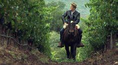 Série documentaire « La route des vins », à la découverte des vignobles aux quatre coins du globe