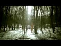 This was the music video that turned me onto Interpol... :)