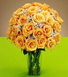 Google Image Result for http://roseandrose.webstarts.com/uploads/Two_Dozen_Orange_Roses_Clear_Tapered_Vase_H.jpg