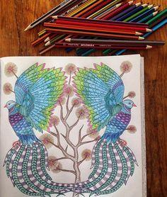 By @filipavaneck #arttherapy #mandala #milliemarottafans #coloringbook…