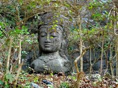 Visit Buddhism's most important pilgrimage site, Bodh Gaya. Book a Tour to Bodh Gaya. Bodh Gaya, Buddha Life, Buddha Temple, Indonesian Art, Earth Wind, Gautama Buddha, Beautiful Space, Nature Pictures, Buddhism