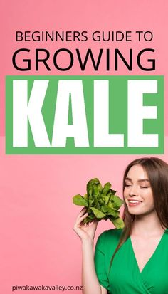 While many people have only been introduced to kale in the last few years, Kale has actually been around for a very long time and it is very easy to grow at home in your vegetable garden, in fact this beginners guide to growing kale will show you just how easy it is! Kale Plant, Cabbage Plant, Gardening For Beginners, Gardening Tips, Types Of Kale, Easy Plants To Grow, Urban Farmer, Starting A Garden, Backyard Farming