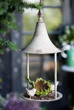 Great idea, laying the sunflower seed head into the feeder.