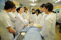 Travaux pratiques d'Anatomie   Copyright: Eric Le Roux