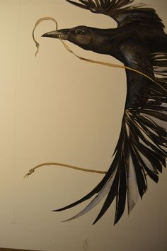 """Love this!! Beauty-Full Illustration of a """"Pied Crow"""". By.....??????"""