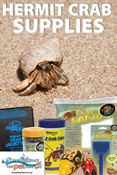 All the supplies you need for your Land Hermit Crab at http://thatpetplace.com?utm_content=buffer23e0e&utm_medium=social&utm_source=pinterest.com&utm_campaign=buffer | Hermit Crab Sand, Hermit Crab Swimming Pools, Hermit Crab Heaters, Hermit Crab Food, Hermit Crab Treats, Hermit Crab Soil, Hermit Crab Shells, Crabitat Decor and more.