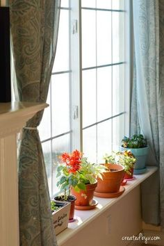 removable window shelf for plants Window Shelf For Plants, Window Shelves, Plant Shelves, Window Sill, Garden Shelves, Desk Shelves, Bookshelves, Shelving, Buy Plants