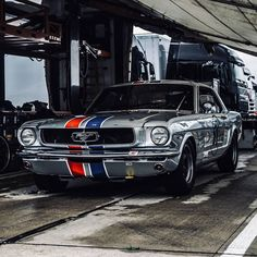 Mustang 1966, Blue Mustang, Ford Mustang Coupe, Mustang Cars, Ford Mustangs, Classic Mustang, Ford Classic Cars, Classic Trucks, Old Muscle Cars