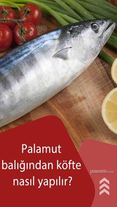 Sunumunu ister salata ile yapın ister başka bir yiyecekten faydalanın ama bu tarif balığı sevmeseniz bile şu dakikadan itibaren kararınızı değiştirecek nitelikte. Çocuklara balık yedirmenin en kolay yolu olan balık köftesini muhteşem lezzetli ve bir o kadar da faydalı palamut balığından denediniz mi? İşte palamut balığından köfte tarifi: