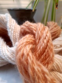 Peach Colors, Bold Colors, Natural Dyeing, Tree Bark, Wool Yarn, Linen Fabric, Fiber, Leaves, Apple