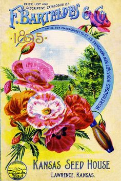 1895 Kansas Seed Vintage Flowers Seed Packet Catalogue Advertisement
