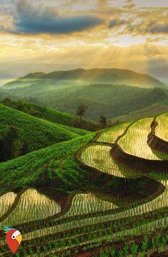 29.06.2016 - Rundreise durch Thailand #travel #backpacker #thailand #adventure
