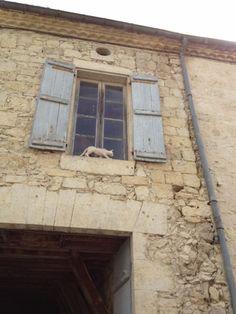 LA ROMIEU (La légende des chats  2 )