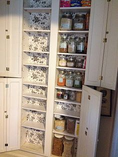 Organizing - kitchen - pantry Space saving Pantry cans deep and 4 across) set in between my wall studs. Pantry Closet, Kitchen Pantry, Kitchen Storage, Storage Spaces, Ranch Kitchen, Condo Kitchen, Compact Kitchen, Pantry Storage, Kitchen Small