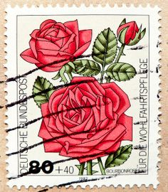 beautiful stamp Germany 80pf. (Rosa borboniana, Bourbonrose)