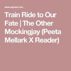 Train Ride to Our Fate | The Other Mockingjay (Peeta Mellark X Reader)
