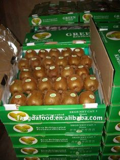 Export new crop dried kiwi fruit market price