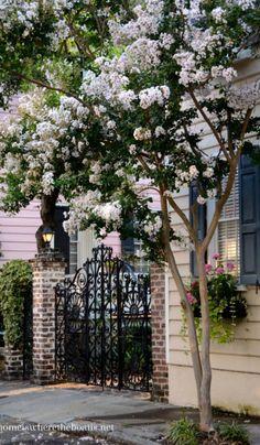 Historic Charleston, SC ~Debbie Orcutt ❤️ (http://homeiswheretheboatis.net/2014/07/25/a-return-to-historic-charleston-sc/)