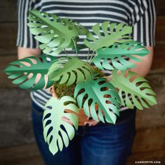 Our potted paper philodendron is both a fantastic housewarming gift and a wonderful piece of DIY home decor! Print our template to make this easy project