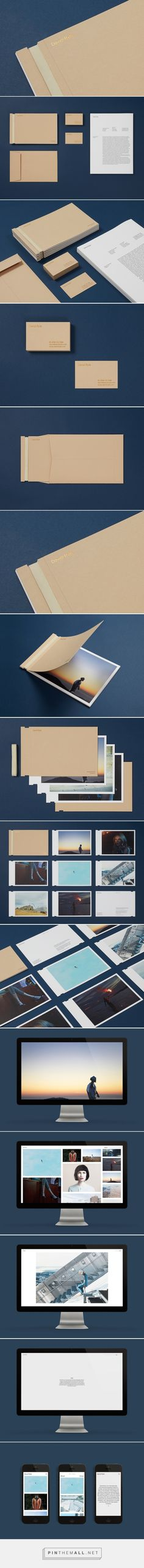 New Brand Identity for David Ryle by S-T — BP&O... - a grouped images picture - Pin Them All