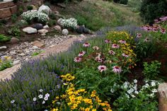 how to landscape next to an irrigation ditch - Google Search