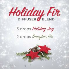 Check out this great essential oil diffuser blend. Happy Holidays!