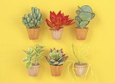 Paper Succulents by Yoko Kogami