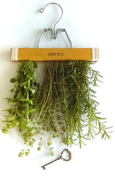 Repurposed Hanging Herb Drying Rack by SecretGardenHerbs on Etsy